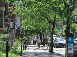 les_rues_de_Montreal-05-les_arbres_dans_les_rues.010