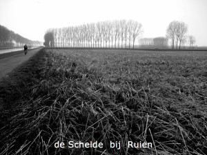 Schelde_bij_Ruien-maart2012